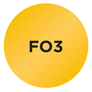 Fluorescent Orange<br>PMS 7408