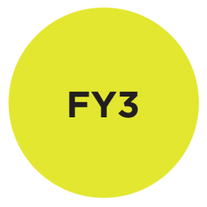 Fluorescent Yellow<br>PMS 387